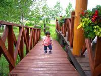 2007-0706ichigo3.jpg