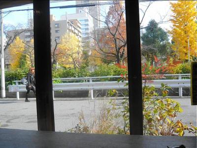 08-12-8 窓から