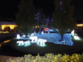 2011-11-3-15
