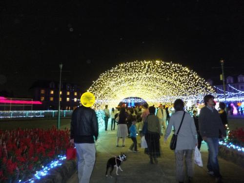 2011-11-3-3
