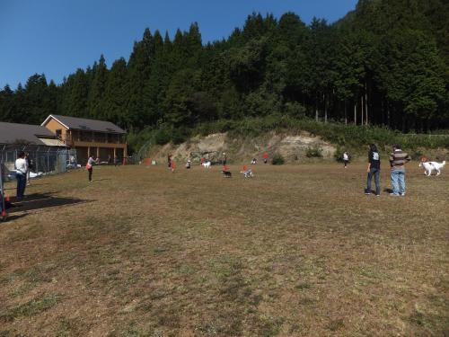 2011-10-9-8