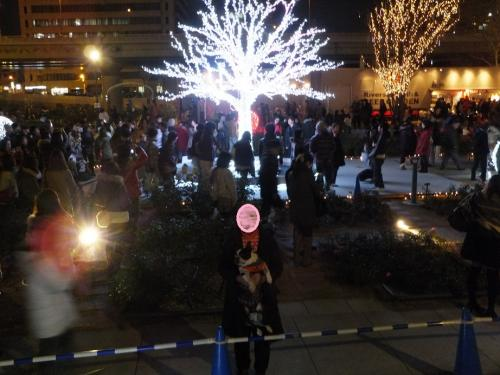 2011-12-18-6