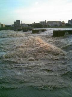 多摩川10003