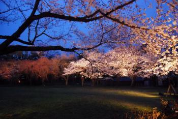0800401京都・奈良163