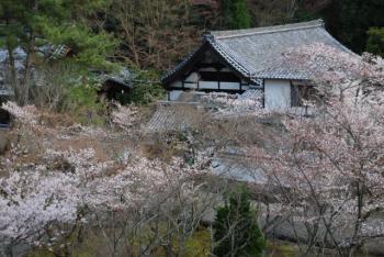 0800401京都・奈良57