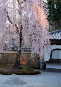 0800401京都・奈良73