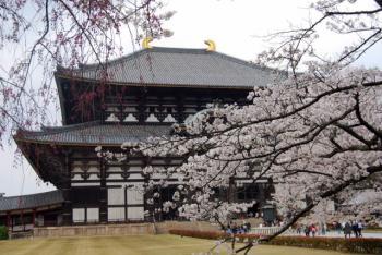 0800401京都・奈良205