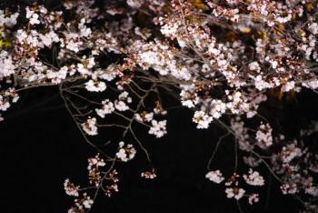 0800401京都・奈良79