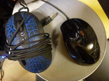 090524_mouse.jpg