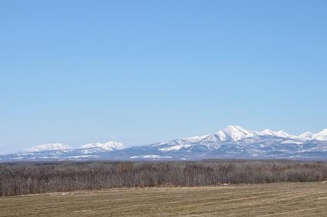 雪残るお山。