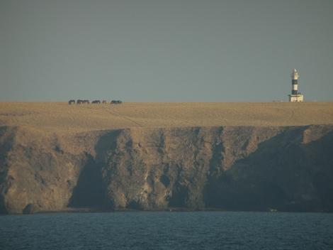 ユルリ島。