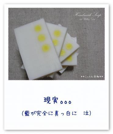 RIMG0425(元)_convert_20090508190026