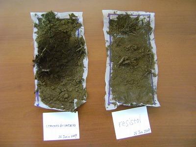 土壌採取サンプル