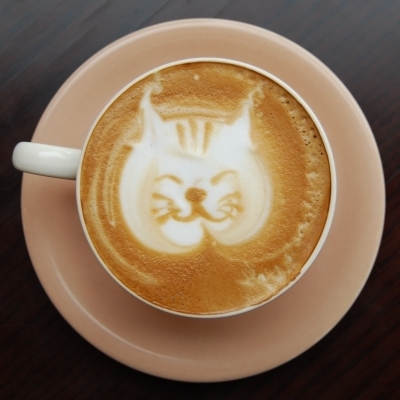 latte art  cat