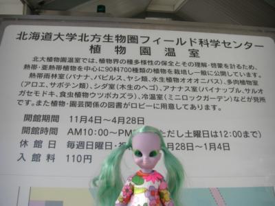 2008.1 128