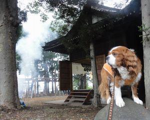 画像 100神社