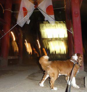 画像 094夜神社