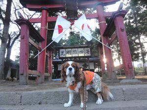画像 096朝神社