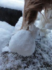 画像 113雪玉