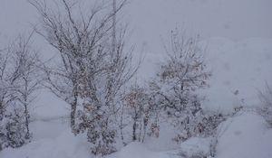 画像 148雪景色