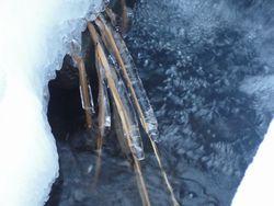 画像 136凍る