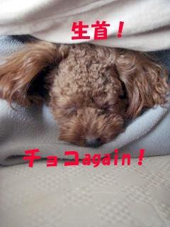 生首  03