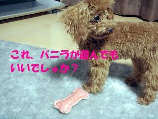 おもちゃ (8)