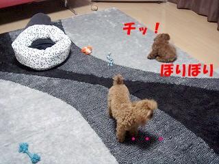 おもちゃ (12)