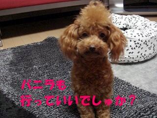 大阪 (4)