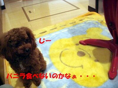 ご飯 (2)