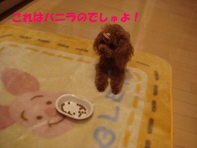 ご飯 (4)