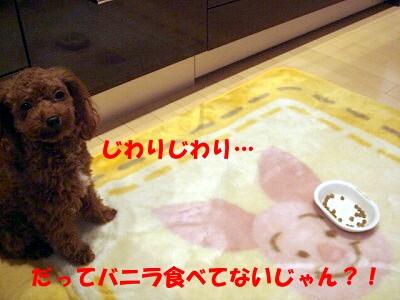 ご飯 (5)