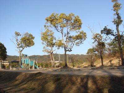 公園 029