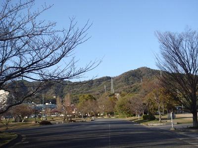 公園 030