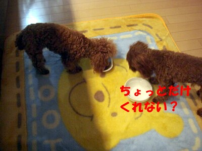 ごはん (2)