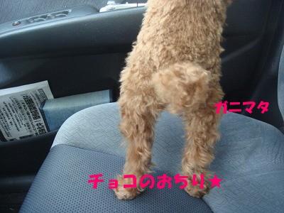 おちり (2)