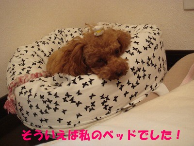 bed (4)