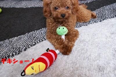 おもちゃ 002