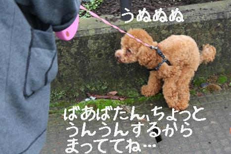 佐野さんぽ2