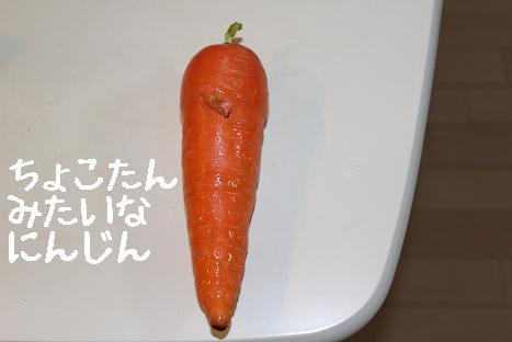 にんじん1