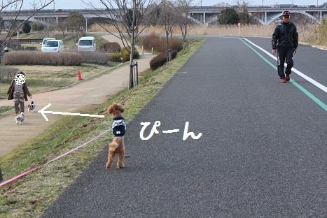 ミーやキャット3