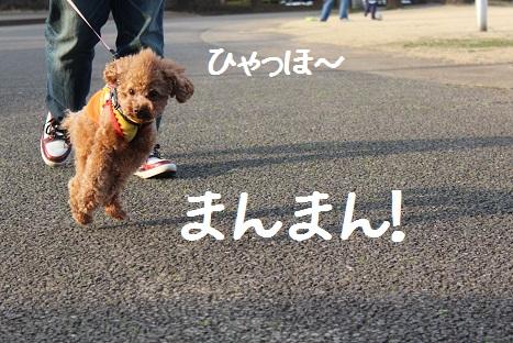 つくば記念公園7