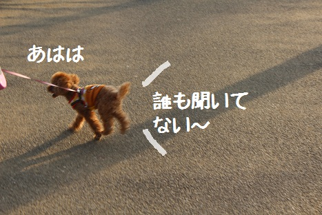つくば記念公園3