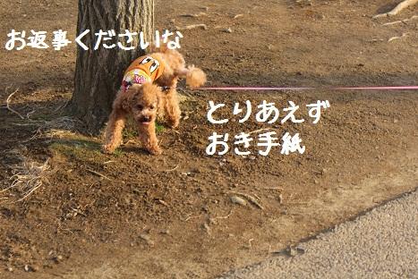つくば記念公園4