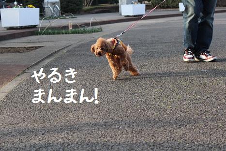 つくば記念公園5