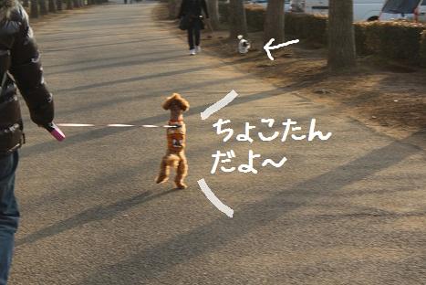 つくば記念公園2