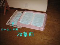 20050120205754.jpg