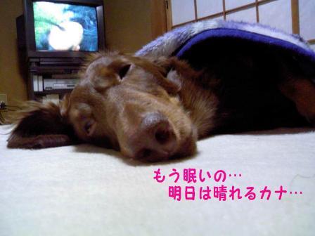 変換 ~ 眠いJPG
