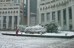 shanghai 006