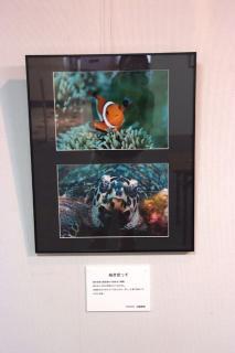 海の写真展2007(作品2)